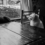 Ushuaia | 26/12/2009