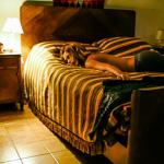 Maitena | 19/01/2011