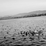 Zürich | 18/06/2011