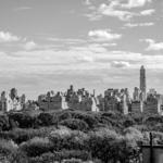Central Park | 01/11/2012