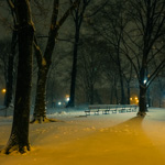 Central Park under snow