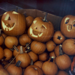 Halloween | 31/10/2013