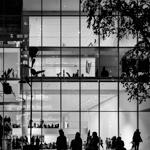 MoMA | 29/11/2015