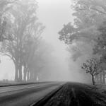 Fog | 03/09/2018