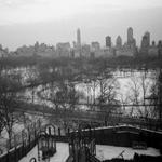 Central Park | 15/02/2019