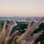 Los Angeles | 06/11/2019