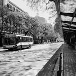 Paseo Colón | 28/04/2020