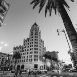 Sunset Boulevard | 08/09/2020